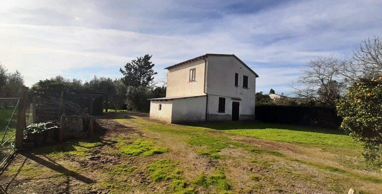 RIF 230/TC-Capalbio casale entemaremma-azienda agricola in vendita